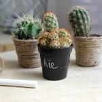 DIY : 2 façons de customiser des pots à cactus