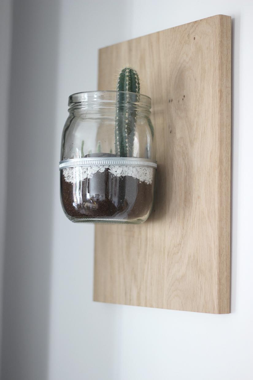 pot-a-cactus-suspendu