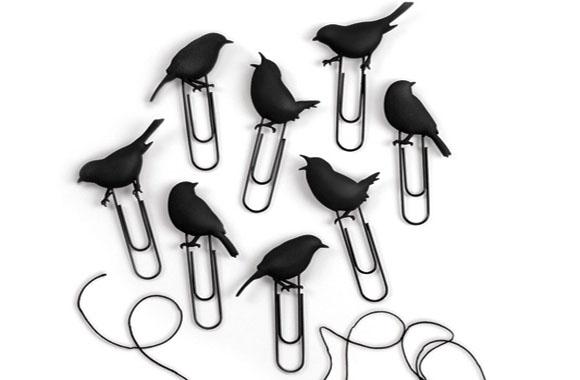 birdsonawire_lr1