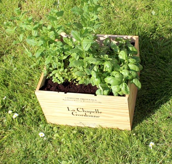 DIY recycler une jardiniere avec une caisse de vin