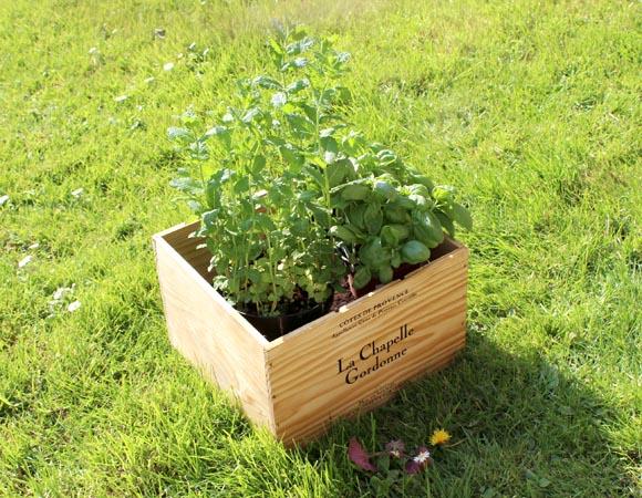 créez une jardinière avec Starwax