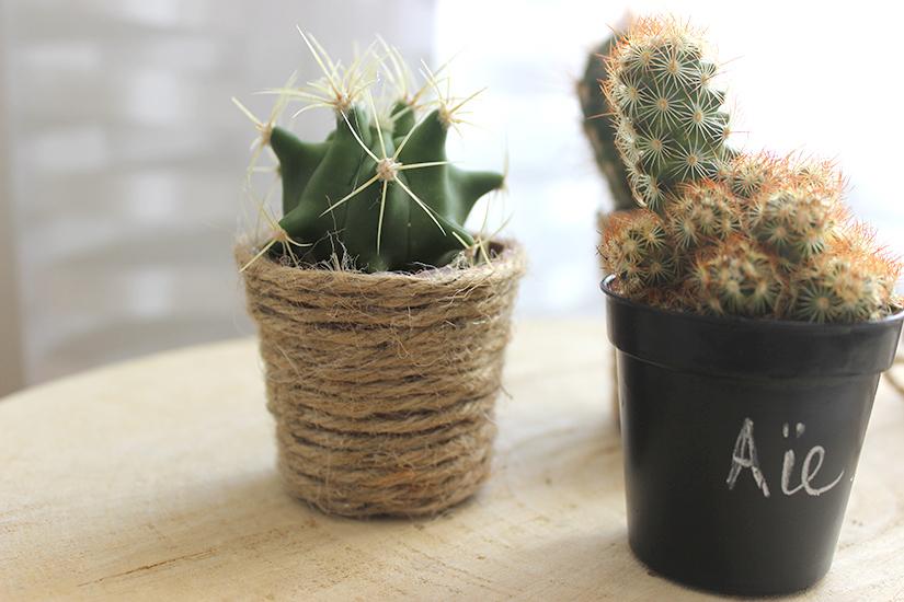 pots de plante effet corde
